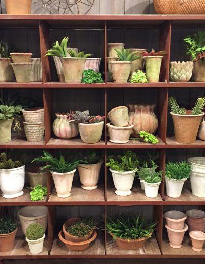 Distinctive Garden Pots
