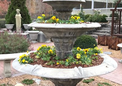 Converted Fountain with Winter Pansies