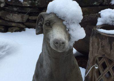 Hound Statue in Snow