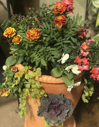 Mixed Fall Planter